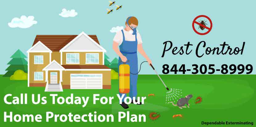Annual Home Protection Plan