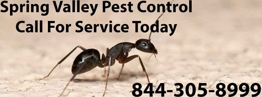 Spring Valley Pest Control