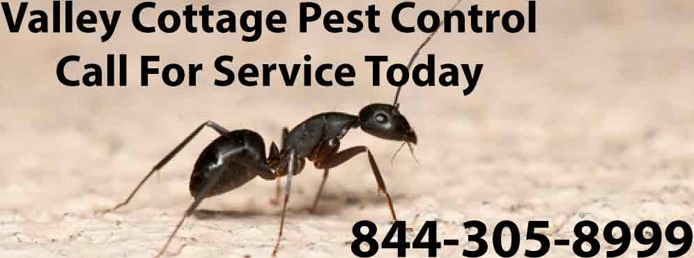 Valley Cottage Pest Control