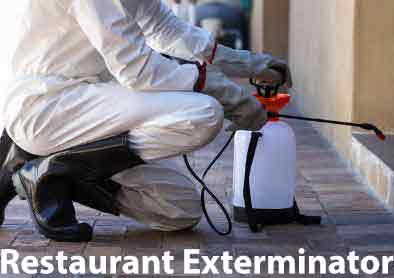 Restaurant Exterminator