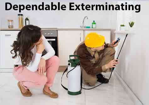 Dependable Exterminating