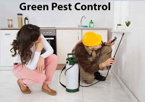 Green Pest Control Technician