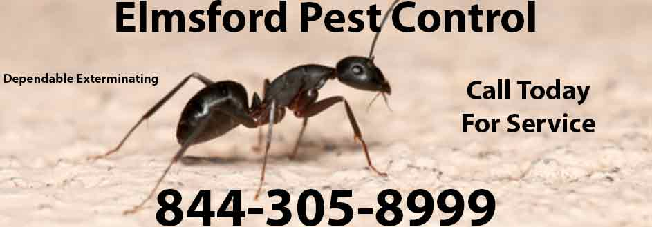 Elmsford Pest Control