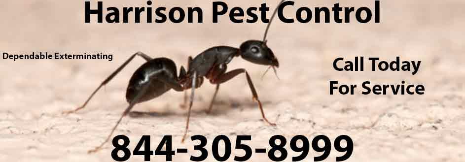 Harrison Pest Control