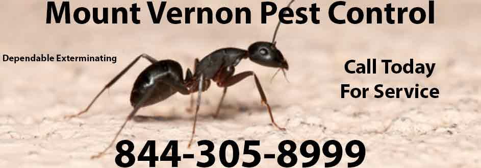 Mount Vernon Pest Control